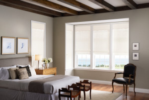 Irmo Window Blinds, Columbia Window Covering, Columbia Window Shades